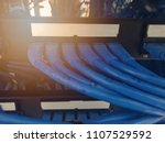 blue lan cable plugged into... | Shutterstock . vector #1107529592