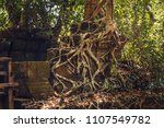ruins of the ancient temple of... | Shutterstock . vector #1107549782