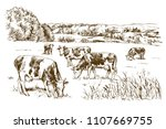 cows grazing on meadow. hand... | Shutterstock .eps vector #1107669755