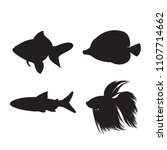 set of freshwater aquarium...   Shutterstock .eps vector #1107714662