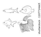 set of freshwater aquarium... | Shutterstock .eps vector #1107714665
