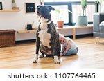 baby girl sitting with pitbull... | Shutterstock . vector #1107764465