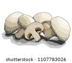 vector illustration graphic... | Shutterstock .eps vector #1107783026