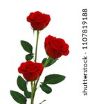 Stock photo three red rose flowers isolated on white background 1107819188