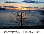 sunset over the solitaire tree... | Shutterstock . vector #1107872108