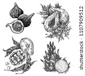 set of exotic fruits. figs ...   Shutterstock .eps vector #1107909512