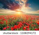green and red beautiful poppy... | Shutterstock . vector #1108294172