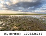 the sultan marshes national...   Shutterstock . vector #1108336166