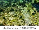stony sea bottom | Shutterstock . vector #1108572206