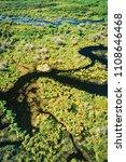 aerial of beaver lodge  spruce...   Shutterstock . vector #1108646468