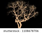 the branches of trees and trees ...   Shutterstock . vector #1108678706