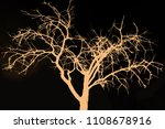 the branches of trees and trees ...   Shutterstock . vector #1108678916
