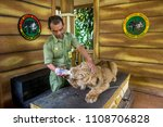 a zoo keeper was feeding the... | Shutterstock . vector #1108706828