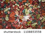 beautiful dried colored fruits... | Shutterstock . vector #1108853558