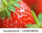 macro closeup of fresh red and... | Shutterstock . vector #1108908032