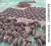 Small photo of Dung extract Dung extract