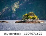 a small rocky island with... | Shutterstock . vector #1109071622