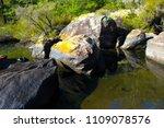 beautiful ancient  slippery... | Shutterstock . vector #1109078576