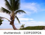 sandy tropical beach with... | Shutterstock . vector #1109100926