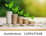 tree growing on coins stack... | Shutterstock . vector #1109147648