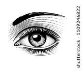eye of woman. vintage engraving ... | Shutterstock . vector #1109246822