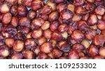 bones from the cherry. cherry... | Shutterstock . vector #1109253302
