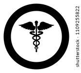 caduceus health symbol... | Shutterstock .eps vector #1109255822