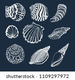 seashells set  white outline on ... | Shutterstock .eps vector #1109297972