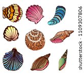 set of colored shells isolated... | Shutterstock .eps vector #1109307806