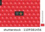food patterns  summer   fruit ... | Shutterstock .eps vector #1109381456