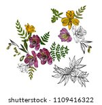 floral pattern with tropical... | Shutterstock .eps vector #1109416322