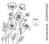 sketch floral botany... | Shutterstock .eps vector #1109454182