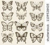 set decorative butterflies. set ... | Shutterstock .eps vector #1109528435