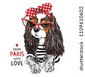 Stock vector cavalier king charles spaniel dog in a striped cardigan in a red sunglasses and with a polka dot 1109610602