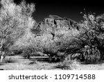 the sonora desert in central... | Shutterstock . vector #1109714588