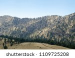 evergreen pine tree forest and... | Shutterstock . vector #1109725208