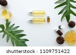 cosmetic nature skincare and... | Shutterstock . vector #1109751422