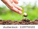 hands of young man watering... | Shutterstock . vector #1109753102