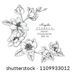 sketch floral botany collection.... | Shutterstock .eps vector #1109933012