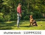 Stock photo young woman train german shepherd dog to sit toned and authentic image 1109992232