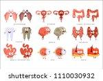 healthy vs unhealthy human... | Shutterstock .eps vector #1110030932
