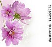 flowers beautiful border | Shutterstock . vector #111005792