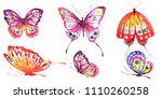 beautiful color butterflies ... | Shutterstock . vector #1110260258