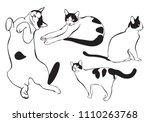 Cute Cat Illustration Sitting ...