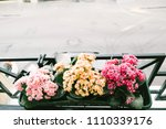 flowerbed with small flowers on ... | Shutterstock . vector #1110339176