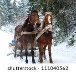 Winter Carpathians. New Year's...