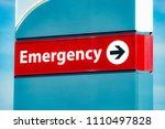 close up horizontal shot of an...   Shutterstock . vector #1110497828