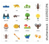 set of 16 icons such as paw ...