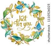 elaeagnus leaves in a... | Shutterstock . vector #1110526025