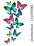 Stock photo many different butterflies isolated on white background 111055082